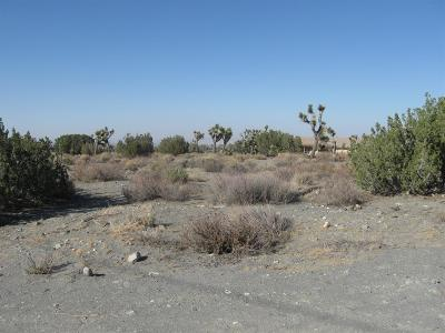 Pinon Hills Residential Lots & Land For Sale: 3210 Coyote Road