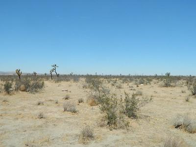 Adelanto Residential Lots & Land For Sale: Cypress Road