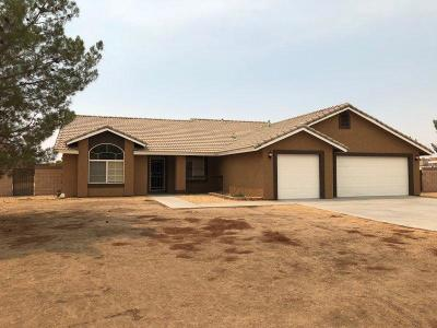 Apple Valley Single Family Home For Sale: 13846 Ivanpah Road