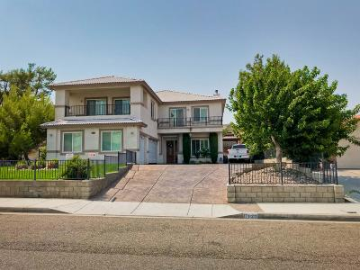 Victorville Single Family Home For Sale: 17920 Vista Point Drive