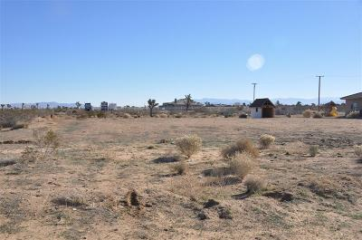 Phelan Residential Lots & Land For Sale: 12233 Pueblo (W Water Meter) Trail