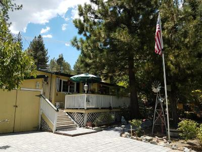 Wrightwood Single Family Home For Sale: 1347 Helen Street