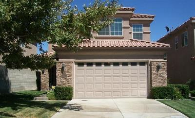 Apple Valley Single Family Home For Sale: 16205 Maricopa Lane