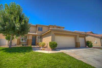 Victorville Single Family Home For Sale: 13223 Concord Drive