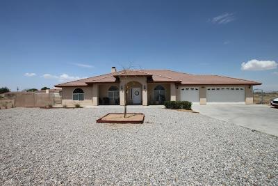 Apple Valley Single Family Home For Sale: 12968 Central Road