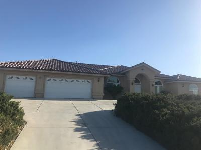 Victorville Single Family Home For Sale: 13641 Dean Place