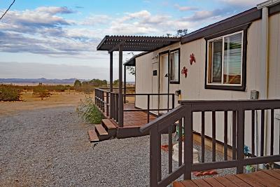 Lucerne Valley Single Family Home For Sale: 29001 Cove Road
