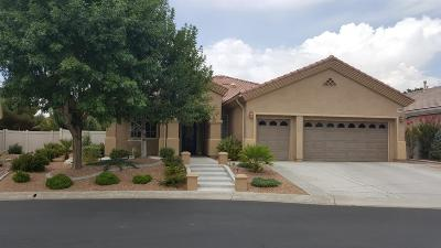 Apple Valley Single Family Home For Sale: 10606 Archerwill Road