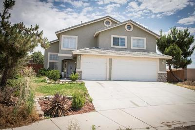 Victorville Single Family Home For Sale: 14350 Adair Court