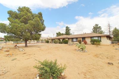 Apple Valley Single Family Home For Sale: 16451 Arcata Lane