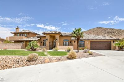 Apple Valley Single Family Home For Sale: 17992 Ohna Road