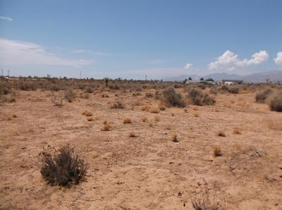 Phelan Residential Lots & Land For Sale: Gorgonio Road
