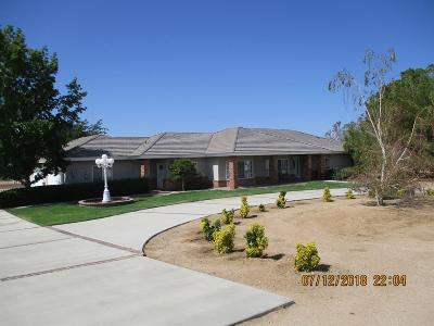 Apple Valley Single Family Home For Sale: 22535 Papago Road #92308