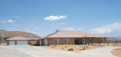 Apple Valley Single Family Home For Sale: 17069 Joshua Road