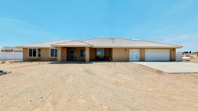 Phelan Single Family Home For Sale: 10182 Shasta Road #A/B