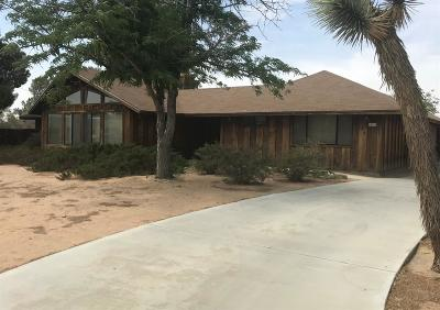Apple Valley Single Family Home For Sale: 14110 Hopi Road