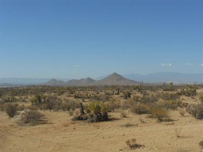 Apple Valley Residential Lots & Land For Sale: Leaping Lizard Lane