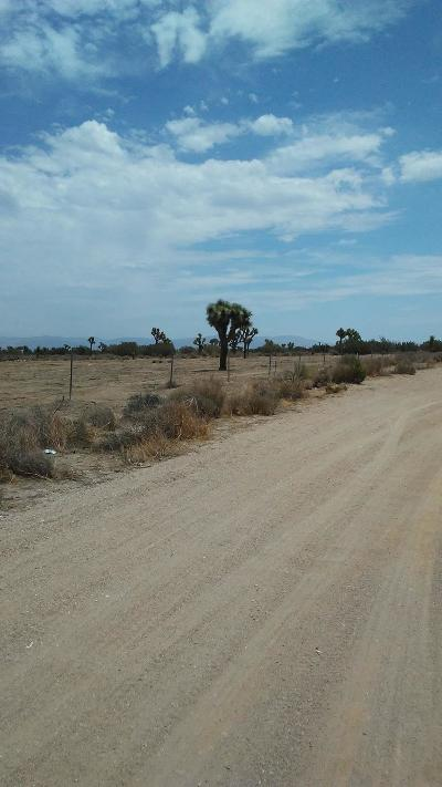 Hesperia Residential Lots & Land For Sale: Yucca Terrace Drive #92345