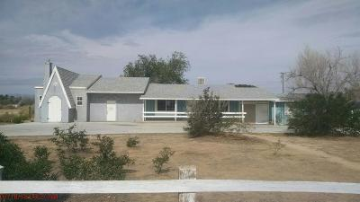 Apple Valley Single Family Home For Sale: 14170 Navajo Road