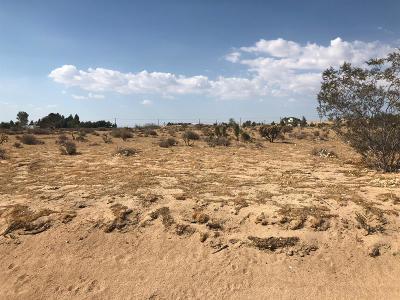 Apple Valley Residential Lots & Land For Sale: Siesta Lane