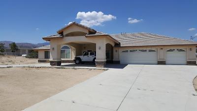 Phelan Single Family Home For Sale: 8990 Malpaso Road