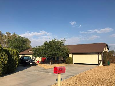 Apple Valley Single Family Home For Sale: 15065 Blackfoot Road