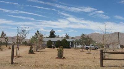 Apple Valley Single Family Home For Sale: 25780 Del Sol Road
