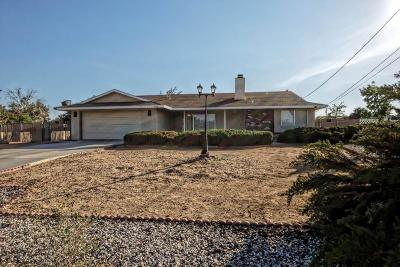Hesperia Single Family Home For Sale: 9060 Evergreen Avenue