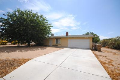Hesperia Single Family Home For Sale: 10738 Oakwood Avenue