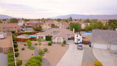Apple Valley Single Family Home For Sale: 20399 Pahute Road