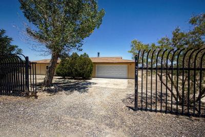 Lucerne Valley Single Family Home For Sale: 32342 Furst Street