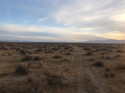 Victorville Residential Lots & Land For Sale: Carnelian Avenue