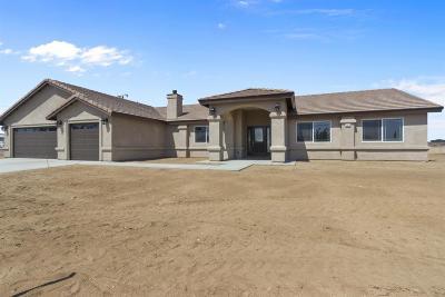 Hesperia Single Family Home For Sale: 11012 1st Avenue #92345