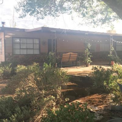 Hesperia Single Family Home For Sale: 15809 El Centro Street