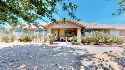 Phelan Single Family Home For Sale: 11670 Nevada Road