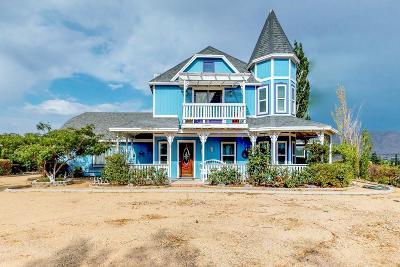 Hesperia Single Family Home For Sale: 8769 Arrowhead Lake Road
