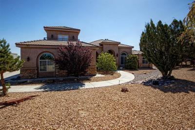 Oak Hills Single Family Home For Sale: 10997 Chelsea Street