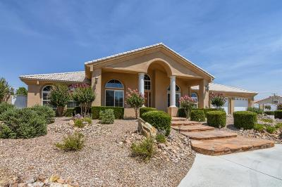 Apple Valley Single Family Home For Sale: 14553 Riverside Drive