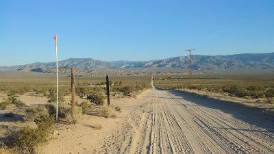 Lucerne Valley Residential Lots & Land For Sale: Randall Road