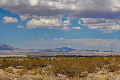 Lucerne Valley Residential Lots & Land For Sale: Albin Way