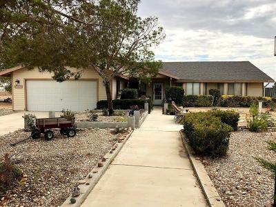 Hesperia Single Family Home For Sale: 11393 Arroyo Avenue
