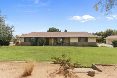 Apple Valley Single Family Home For Sale: 23535 Resoto Road