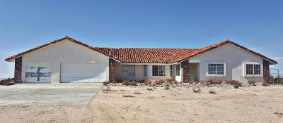 Apple Valley Single Family Home For Sale: 25625 Castlerock Road
