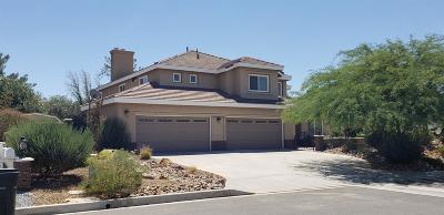 Apple Valley Single Family Home For Sale: 12759 Yorkshire Drive