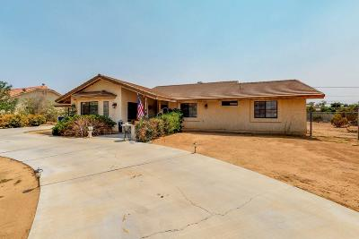 Apple Valley Single Family Home For Sale: 19951 Us Highway 18
