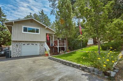 Wrightwood Single Family Home For Sale: 6067 Mill Road