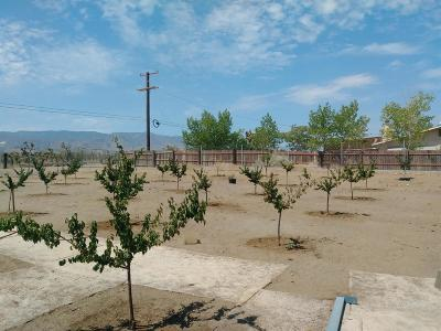 Phelan Residential Lots & Land For Sale: 3800 Coyote Road