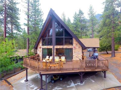 Wrightwood Single Family Home For Sale: 1604 Blackbird Road