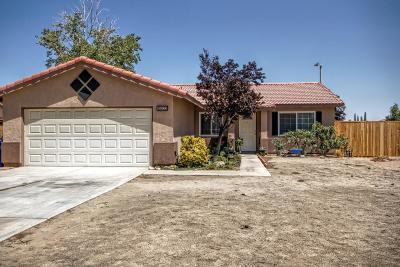 Adelanto Single Family Home For Sale: 10832 Hickory Street