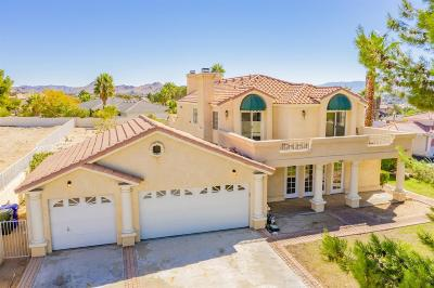 Apple Valley Single Family Home For Sale: 16303 Ridge View Drive